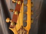 fest13_guitardoc_03