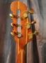 fest13_guitardoc_ii_12