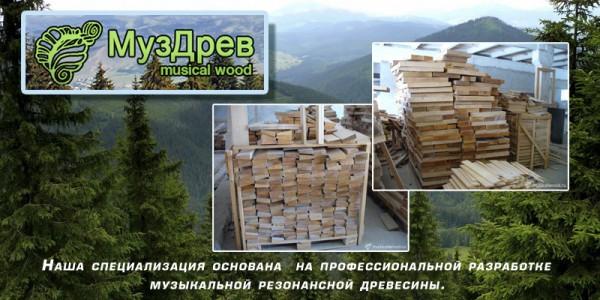 fest14_muzdrev_01