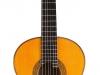 Dieter Hopf Guitars