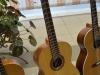 Гитары Сергея Чешейко